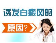 白癜风的致病因及症状